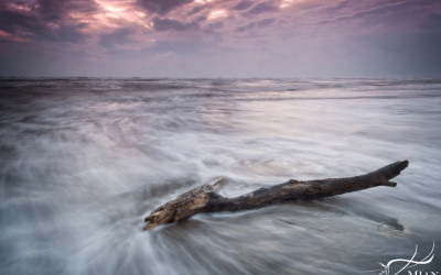 A piece of driftwood licked by the waves at Baltray Beach, Co. Louth, Ireland at Sunset