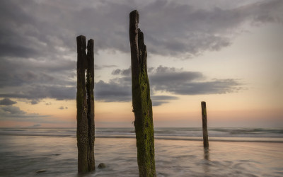 Dunany Sticks Groynes County Louth Ireland