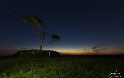 Plough Above the Fairy Tree Knockbridge County Louth Ireland after Sunset
