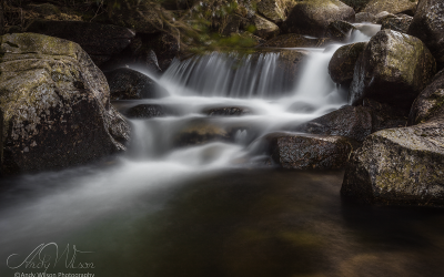 The Glen River in Donard Forest Mournes Co. Down