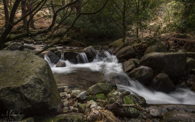 Glen River Donard Forest Mournes County Down